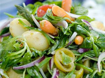 Potatis och primörsallad