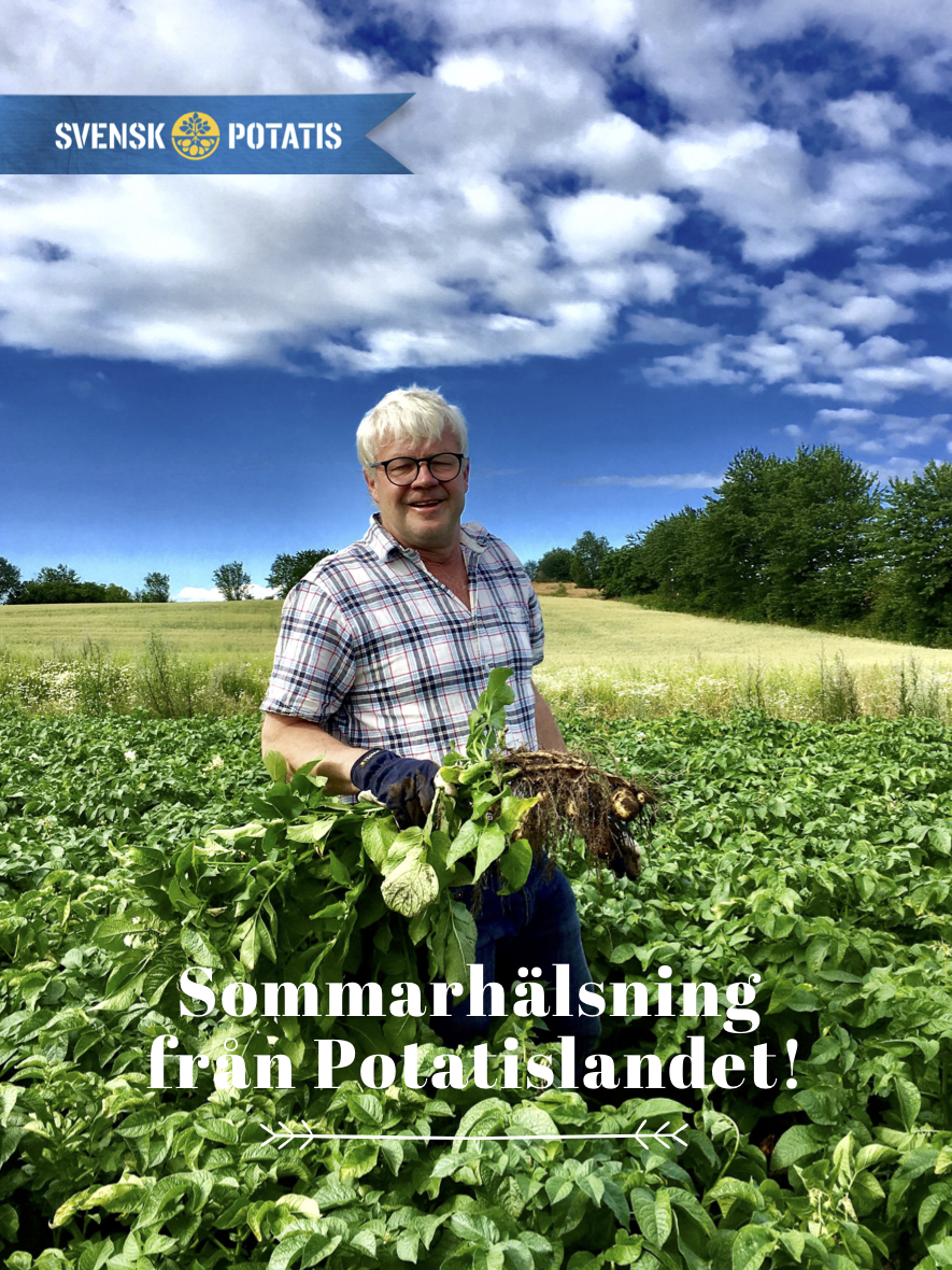 Hälsning från Potatislandet – juli månad