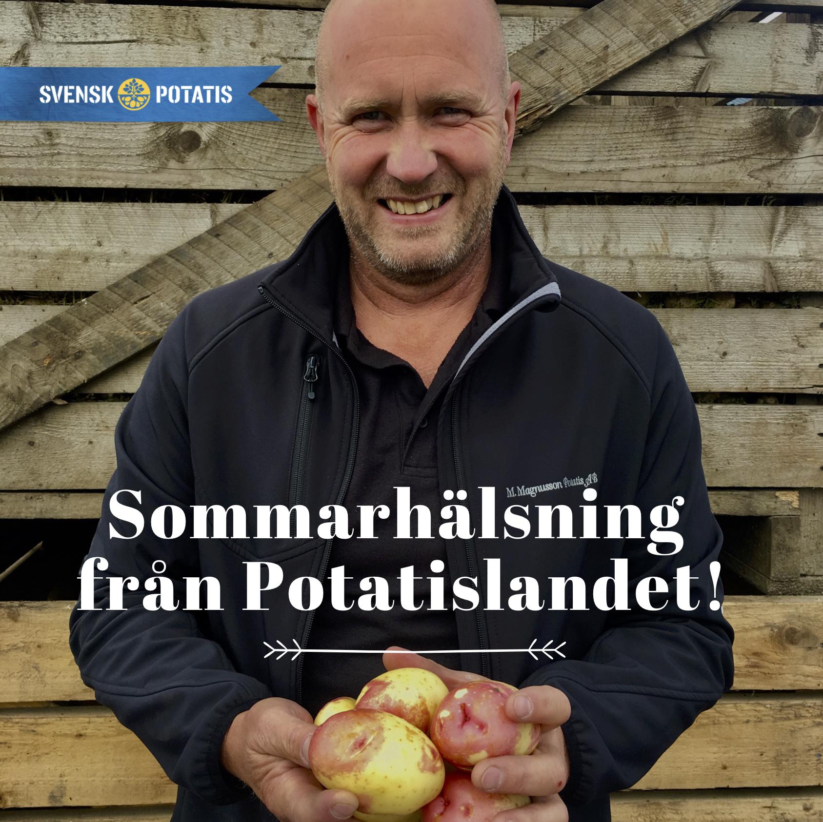 Hälsning från Potatislandet – augusti månad