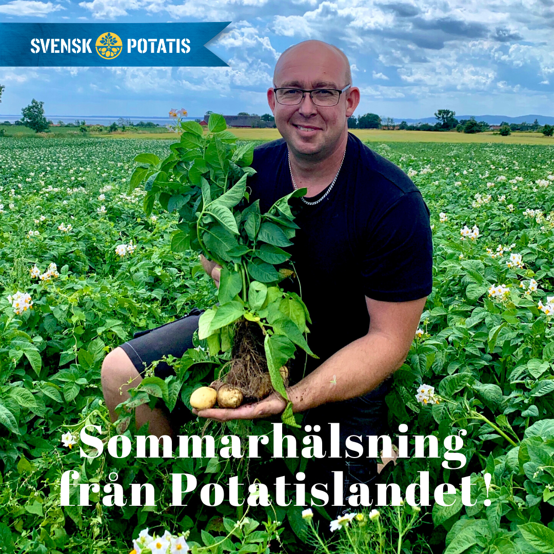 Hälsning från Potatislandet – juni månad