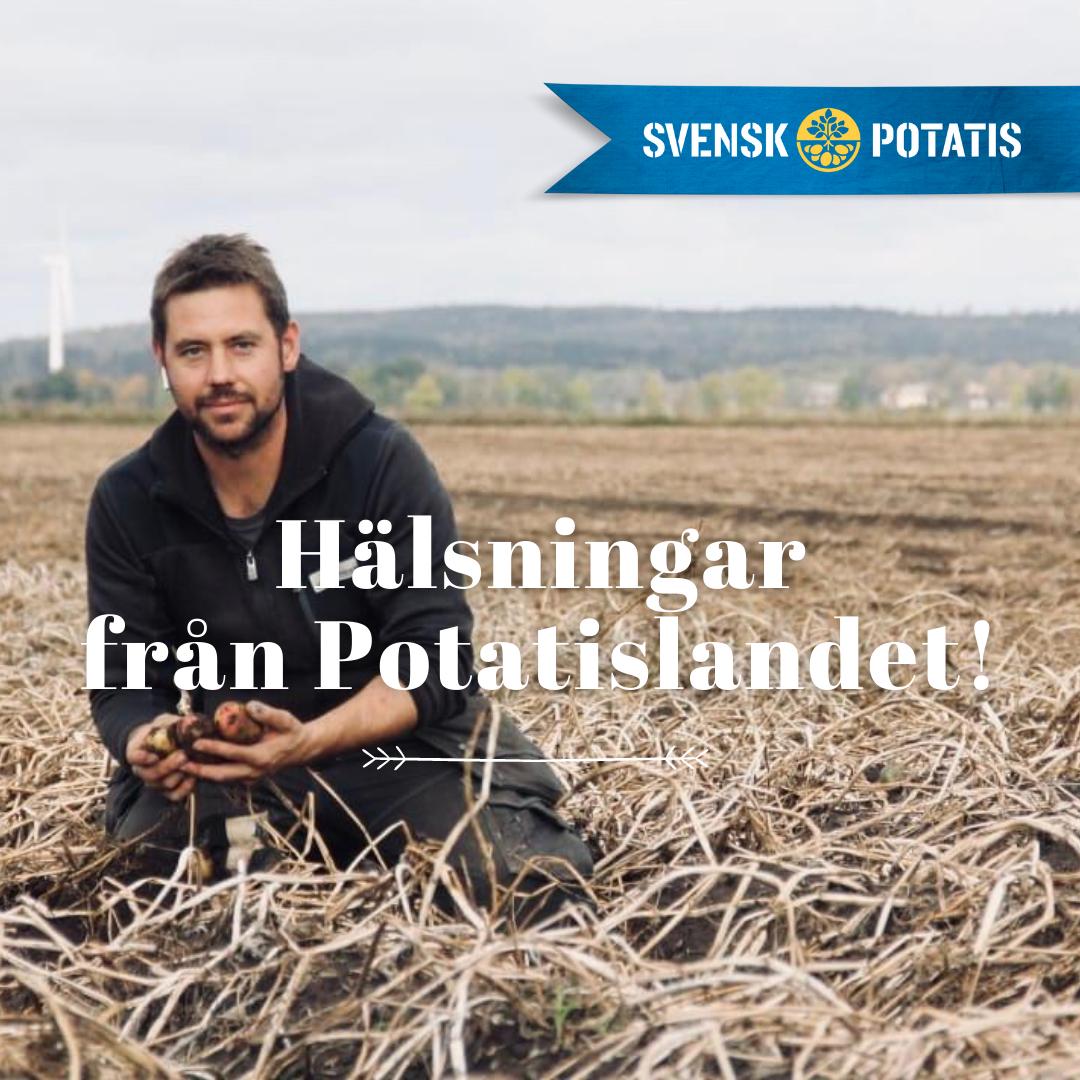 Hälsningar från Potatislandet – september månad